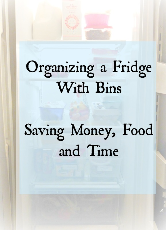 Organized Refrigerator to Save Money and Food