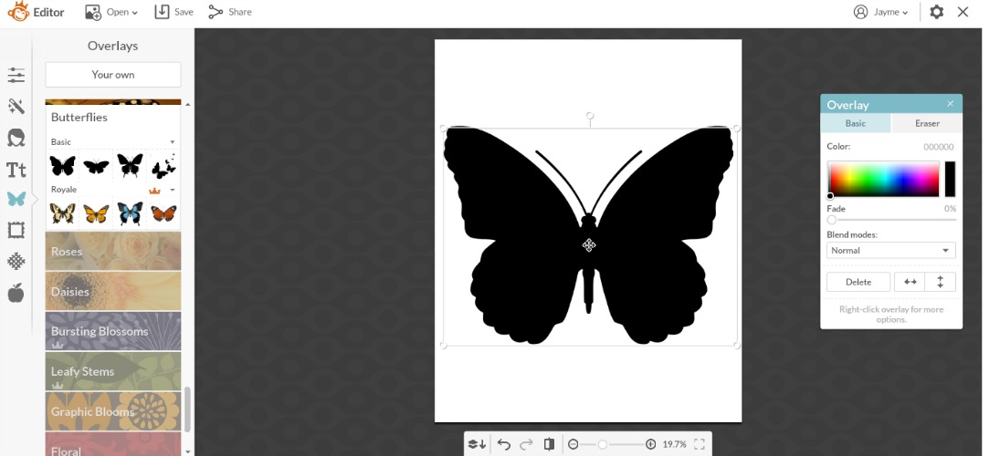 Butterfly overlay