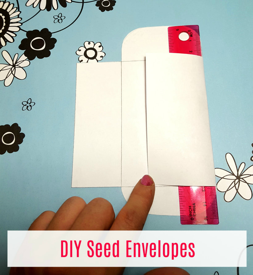 Fold your seed packet and use a ruler to crease the edges.